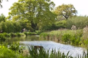 Izaak Walton - canal pool