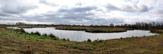 Seighford Lakes - The Maze